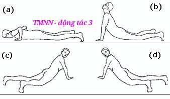 Thanh lọc cơ thể